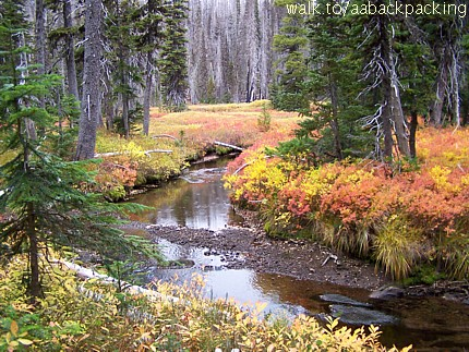 Canyon Creek Meadows in fall colors